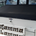 Custom Marine Boat top canvas Lake Lanier